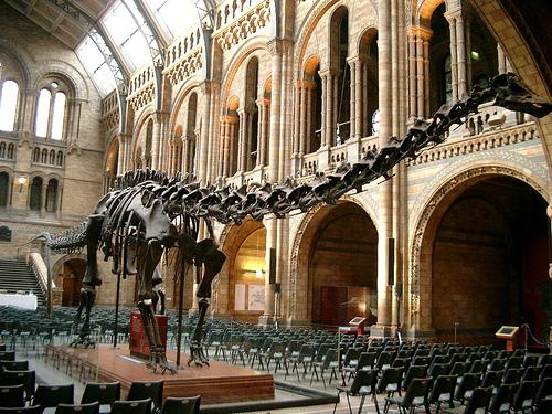 El Museo de Historia Natural en Metro Londres