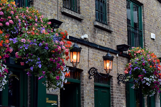 whisky en Dublín
