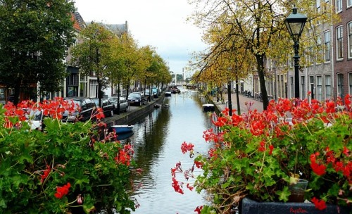 Qué ver en Ámsterdam: lo que no te puedes perder