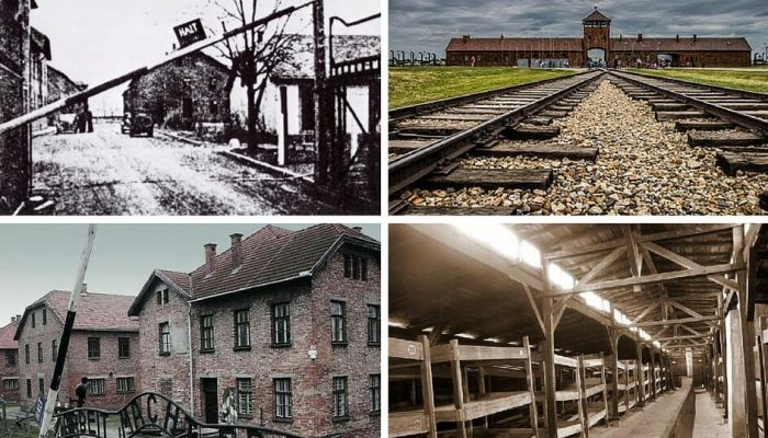 auschwitz collage
